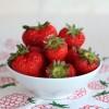 Erdbeer Topfen Joghurt Torte mit Haserl Wiese - vegetarisch