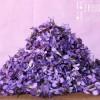 Veilchen - Essbare Blüten - Veilchen-Eiswürfel & Veilchen tiefkühlen