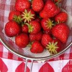 Erdbeer Ananas Bowle