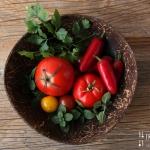 Melanzani Tomaten Gemüse mit Stracchino - vegetarisch