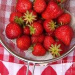 Erdbeer Topfen Creme für Tortenfüllungen - vegetarisch