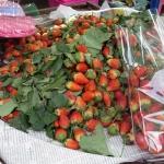 Erdbeer Biskuit mit Topfen Mascarpone Joghurt Creme - vegetarisch
