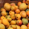 Mango Bowle