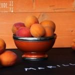 Topfen (Quark)-Kuchen mit Marillen (Aprikosen) - vegetarisch