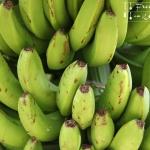 Bananenbrot in der Brotbackmaschine - vegetarisch