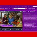 Tortenfiguren.at war im Fernsehen --> der Bericht ist in der ORF TV-Thek