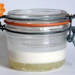 Experiment Mandelmilch Joghurt