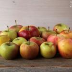 Apfelkuchen mit Mandelsplittern - vegetarisch