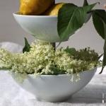 Holunderblüten Pudding - vegetarisch