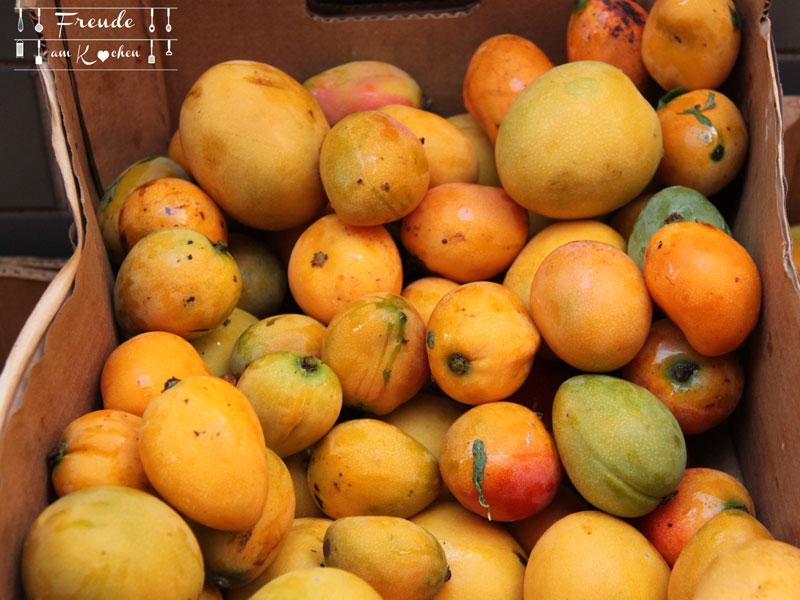 Mango-03