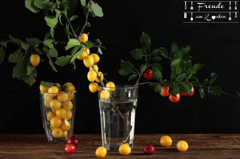 Kriecherl Mirabellen Likör - Reneclauden - Ringlotten - Kirschpfalumen Liqueur - Rezept vegan - Freude am Kochen