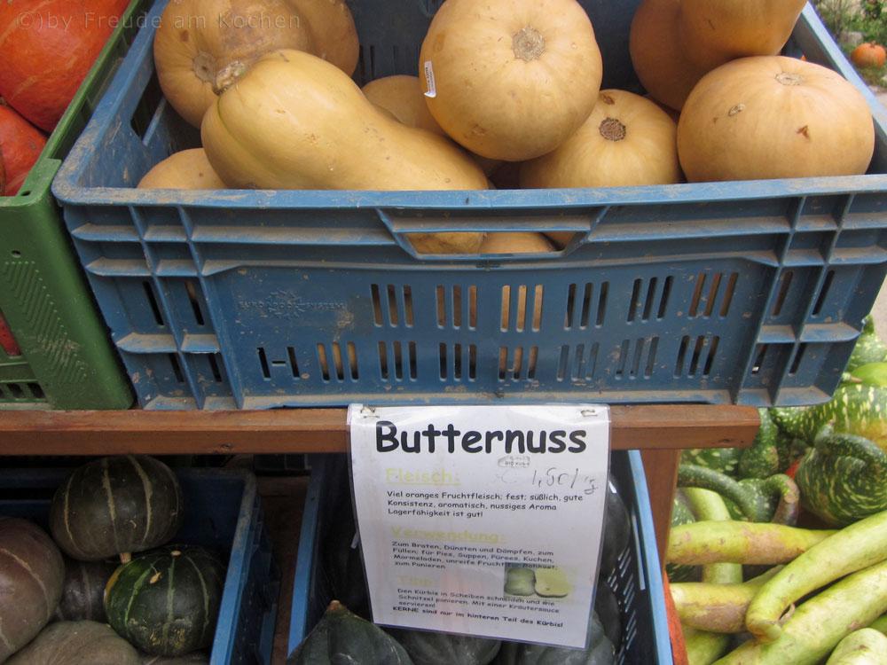 Butternuss-Kuerbis-01