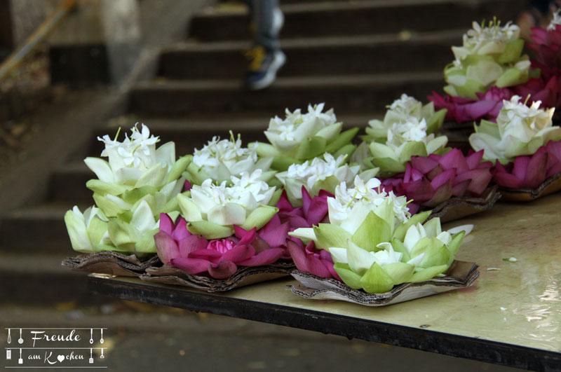 Lotusblüten - Sri Lanka Freude am Kochen