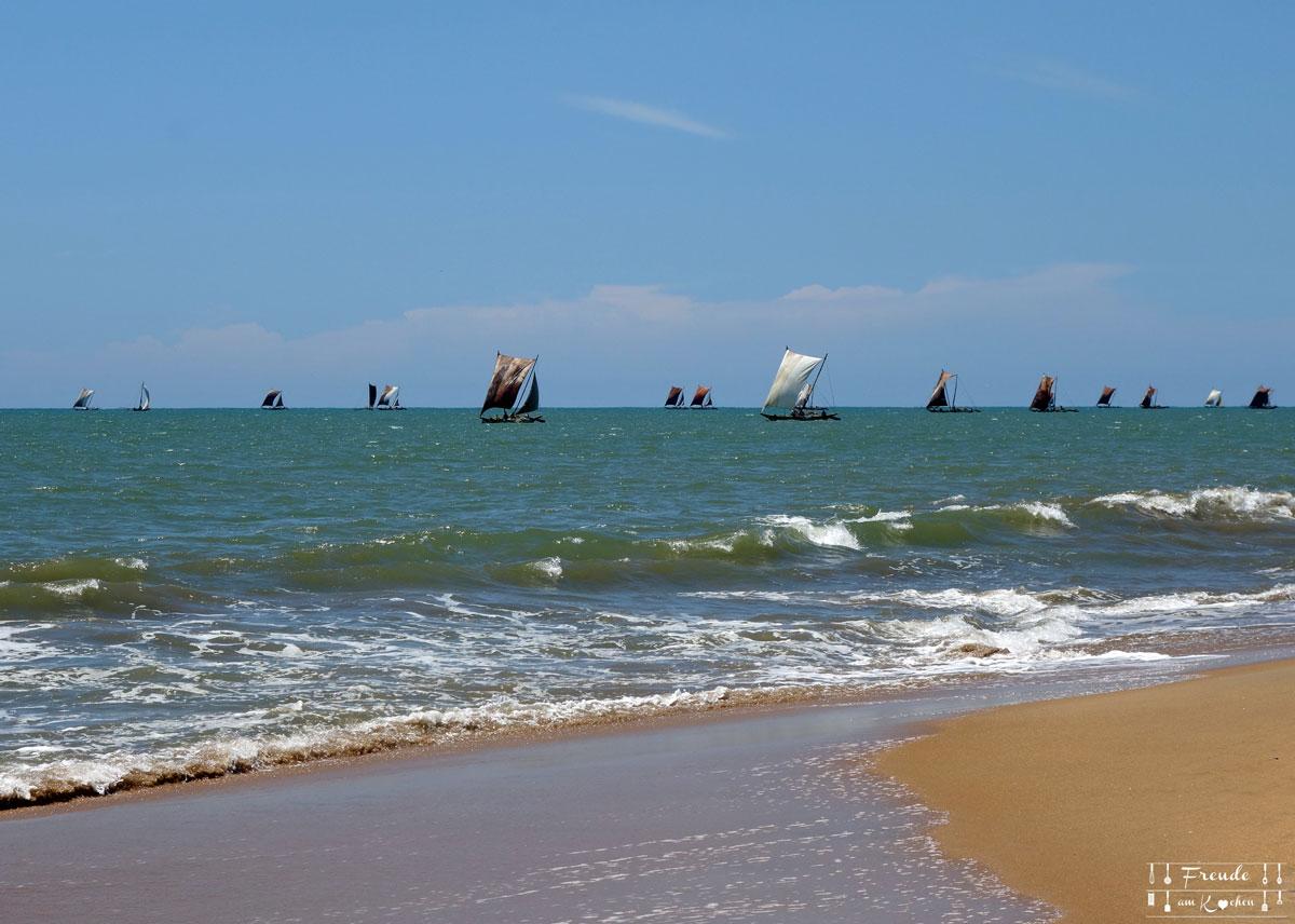 Reisebericht Sri Lanka - Negombo - Freude am Kochen