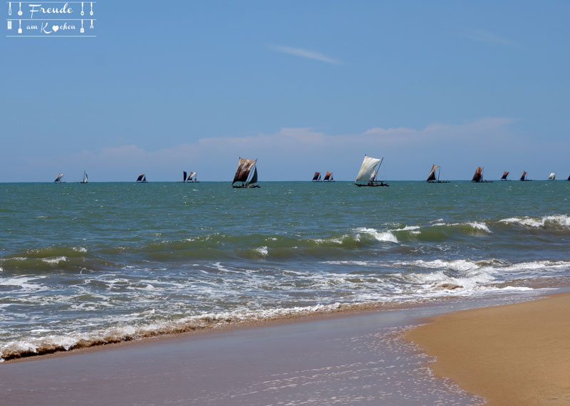 Jetwing Beach - Reisebericht Sri Lanka - Negombo - Freude am Kochen