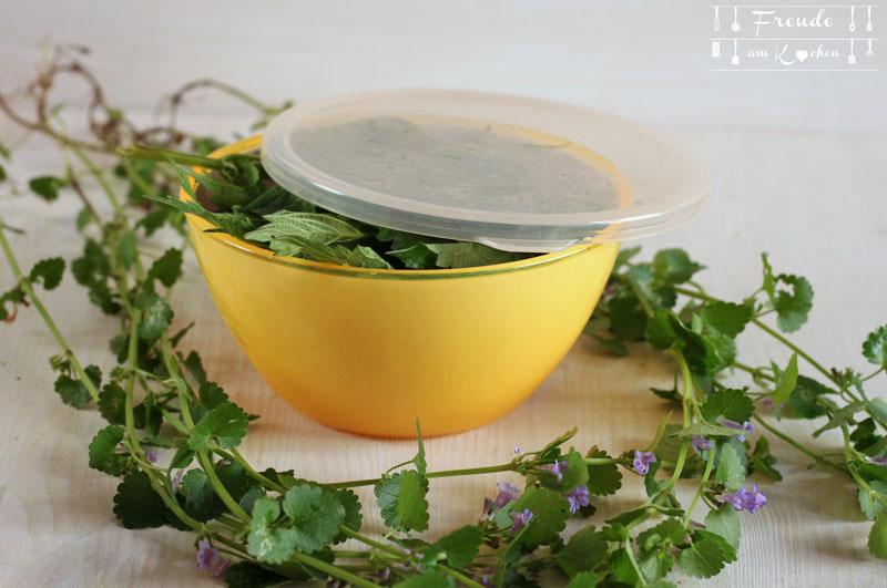 Quicktipp: Wildkräuter Aufbewahrung - länger haltbar - Freude am Kochen