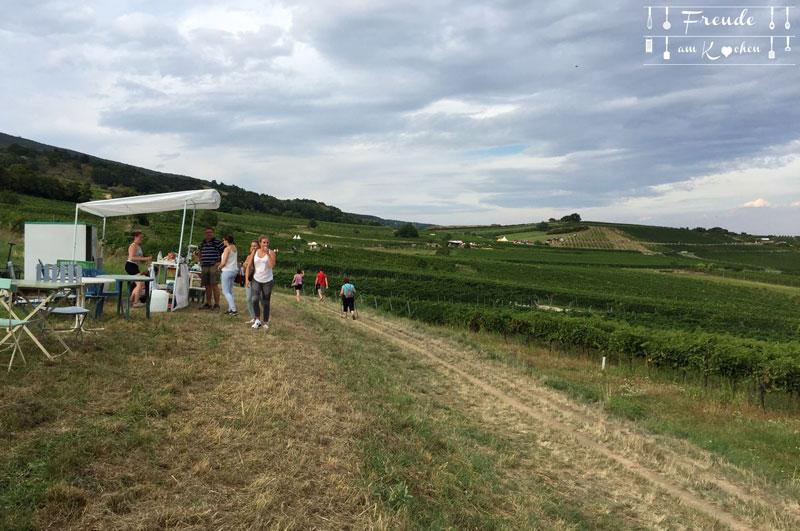 Genussmeile 2016 - die längste Schank der Welt von Mödling bis Bad Vöslau - Freude am Kochen