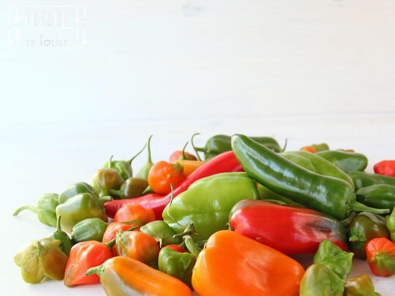 September Saisonkalender - Was hat im September Saison - Freude am Kochen