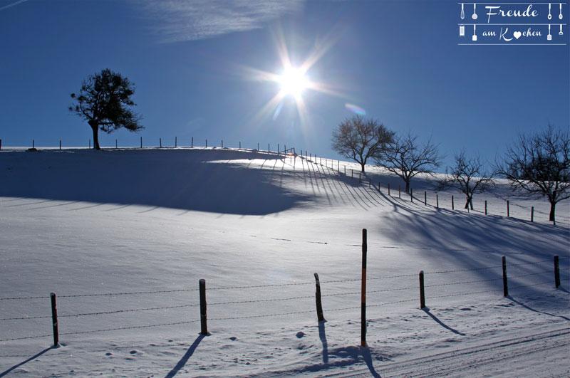 Sonntagberg - Mosviertel - Österreich - Freude am Kochen - Winter - Schnee
