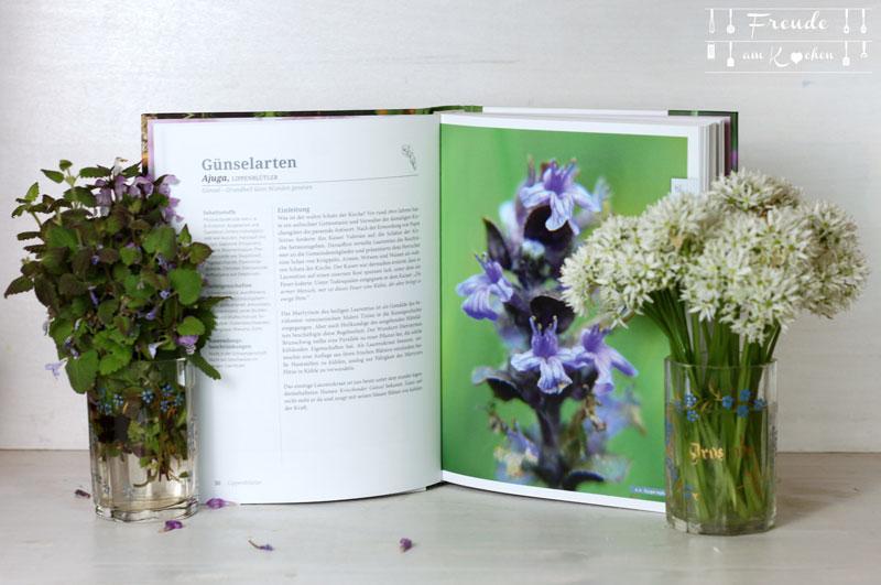 Rezension: Pflanzenschätze der Ahnen von Ellen Huber - Freude am Kochen