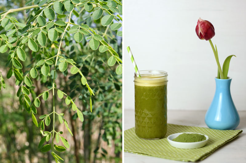 Moringa Orangen Drink - Superfood - Freude am Kochen vegan