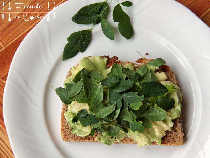Frühstück auf Teneriffa - Avocado Brot mit frischem Moringa - Freude am Kochen vegan