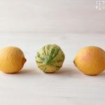 Die Zitrone als Gesundheits Wunder?