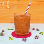Nektarinen Slush - Thermomix