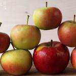 Apfelsaft Amaretto Punsch