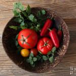 Melanzani Tomaten Gemüse mit Stracchino – vegetarisch