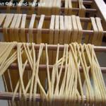 Pasta selbermachen – vegetarisch