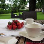 Erdbeer-Topfen (Quark)-Tiramisu – vegetarisch