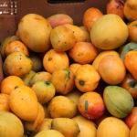 Mango-Kiwi-Konfitüre bzw Marmelade
