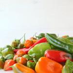 Griechisch gebratene Paprika