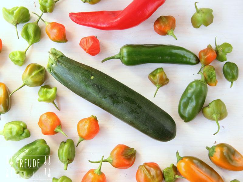 Asiatische Zucchini Sojasprossen Ingwer Pasta - Freude am Kochen