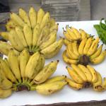 Kokos Bananenkuchen mit Buttermilch – vegetarisch