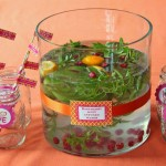 Raspberry Mint Infused Water – Wasser mit Himbeer Minz Aroma
