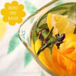 Orange Mint infused Water – Aromatisiertes Wasser mit Orange und Schoko-Minze