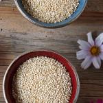 "Bunter Quinoa Salat mit Kürbiskernöl –  ""Vegan Wednesday"""