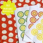 Zitrusfrucht Free Printable Etiketten von Wendolonia.com