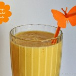 Mangolassi – vegetarisch