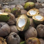 Kokos Ananas Lassi – vegetarisch