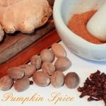 Pumpkin Spice Gewürz & Kürbis Mus
