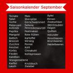 Saisonkalender September – Was hat Saison?