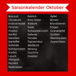 Saisonkalender Oktober – Was hat Saison?