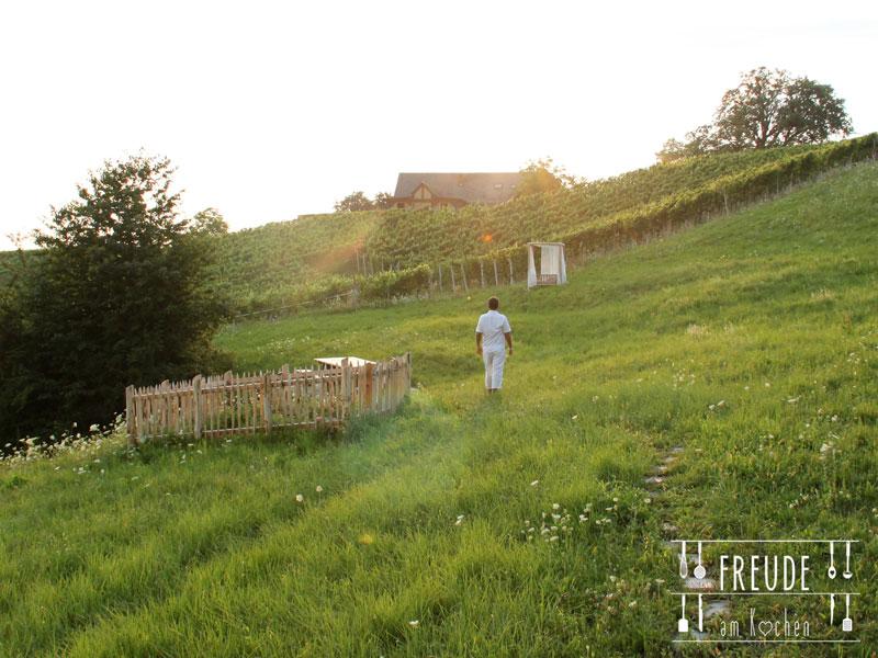Weinurlaub-Unterlamm-59