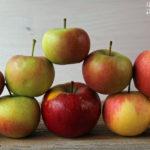 Apfelvollkornpie mit Heidelbeeren – vegetarisch