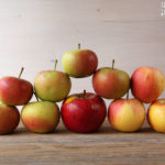 Apfelkompott Biskotten Schichtspeise – vegetarisch