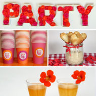 Party & Fingerfood Rezept Sammlung Vegan