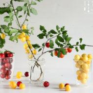 Kriecherl Rezepte - Mirabellen Inspirationen